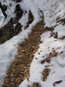 izvir je stopil sneg